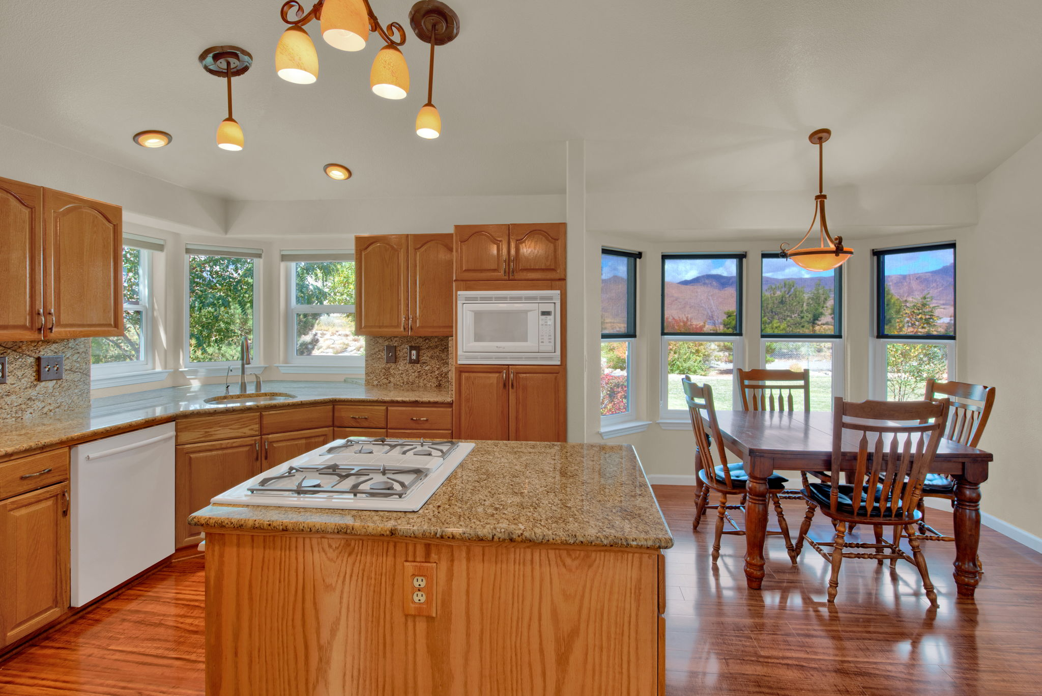 Kitchen view towards backyard
