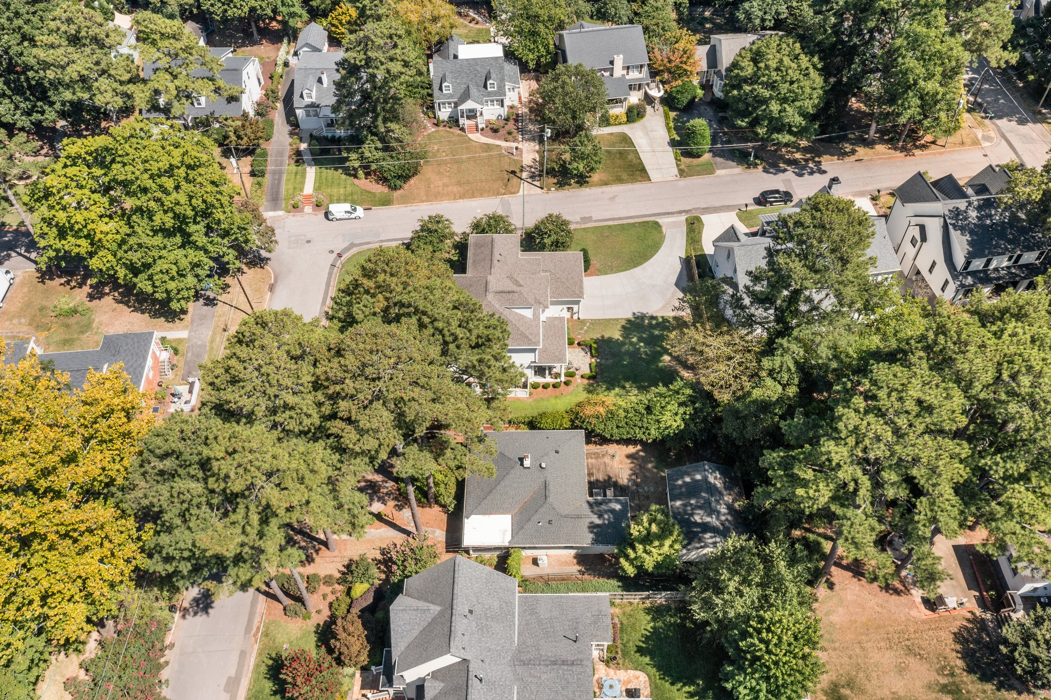 1805 Wilshire Ave, Raleigh, NC 27608, USA Photo 7
