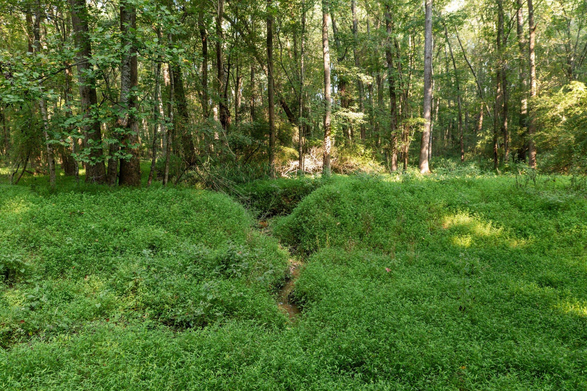 195 Clover Ridge, Angier, NC 27501, USA Photo 13