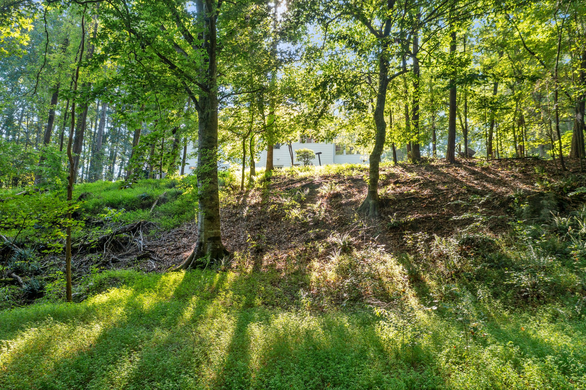 195 Clover Ridge, Angier, NC 27501, USA Photo 14