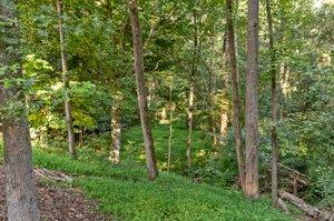 195 Clover Ridge, Angier, NC 27501, USA Photo 15