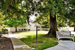 1980 Vía Appia, Walnut Creek, CA 94598, USA Photo 37