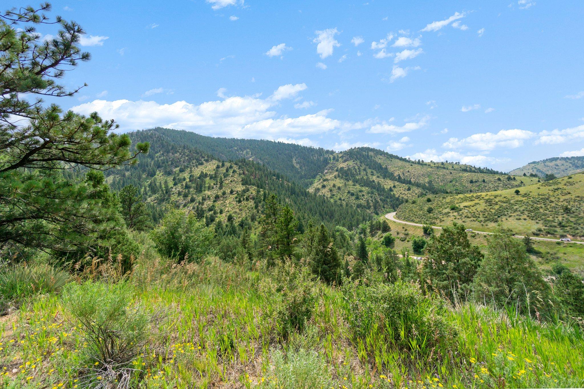 21725 Shady Ln, Idledale, CO 80453, USA Photo 11