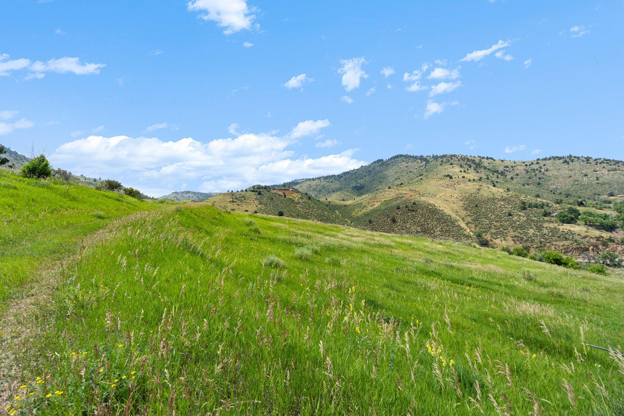 21725 Shady Ln, Idledale, CO 80453, USA Photo 7