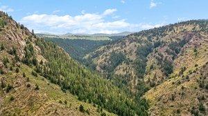 21725 Shady Ln, Idledale, CO 80453, USA Photo 12