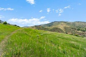 21725 Shady Ln, Idledale, CO 80453, USA Photo 6