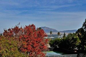 2804 Morgan Dr, San Ramon, CA 94583, USA Photo 40