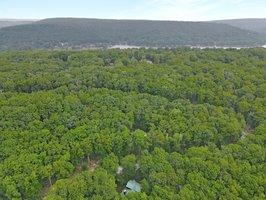 320 Treetop Way, Oakland, MD 21550, USA Photo 59
