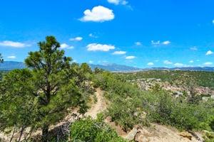 4295 Ridgecrest Dr, Colorado Springs, CO 80918, US Photo 4