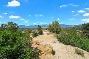 4295 Ridgecrest Dr, Colorado Springs, CO 80918, US Photo 12