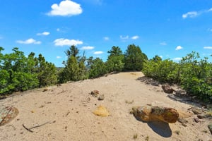 4295 Ridgecrest Dr, Colorado Springs, CO 80918, US Photo 11
