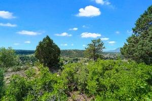 4295 Ridgecrest Dr, Colorado Springs, CO 80918, US Photo 1