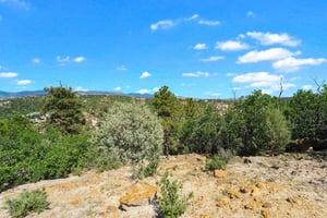 4295 Ridgecrest Dr, Colorado Springs, CO 80918, US Photo 13