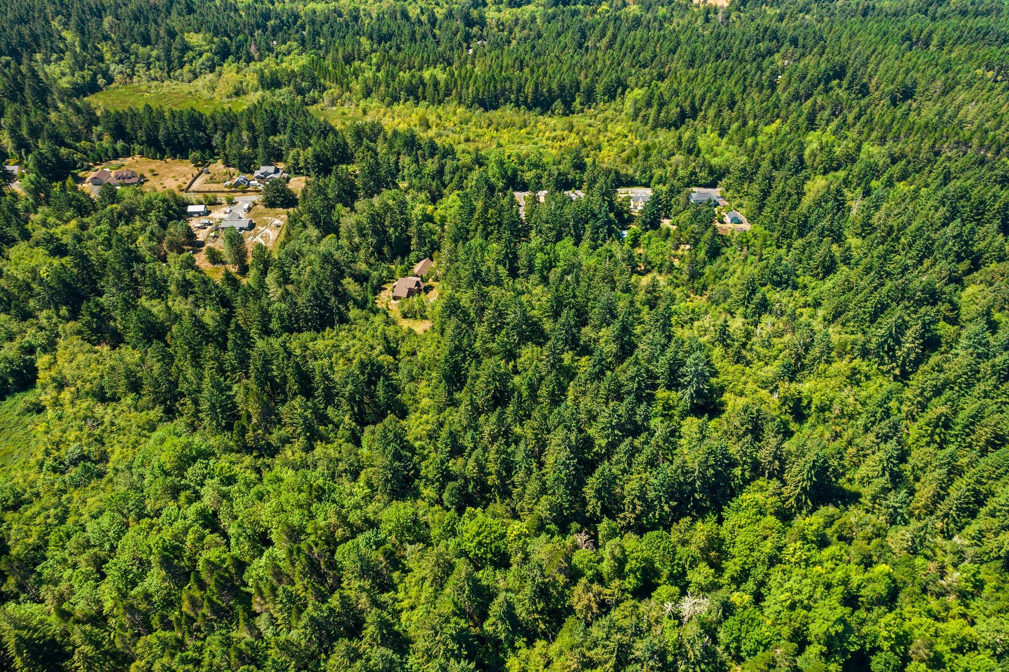 7900 Woods Estate Ln NE, Olympia, WA 98506, USA Photo 36