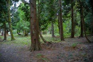 8291 Semiahmoo Dr, Blaine, WA 98230, USA Photo 41