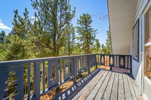 832 Spring Valley Dr, Divide, CO 80814, USA Photo 20