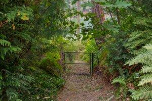 9042 Gallea St NE, Olympia, WA 98516, USA Photo 32
